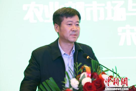 中国农业部市场与经济信息化司副司长宋丹阳 陈溯 摄