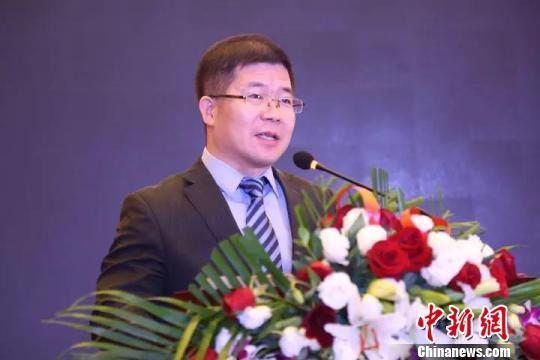 网库集团董事长王海波 陈溯 摄