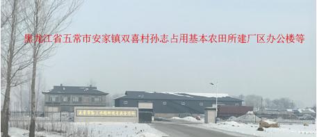 黑龙江五常:村民非法占用基本农田建房谁之过?