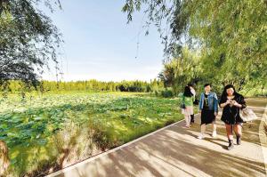 昆明环保重点:滇池的水、土壤污染防治、扬尘