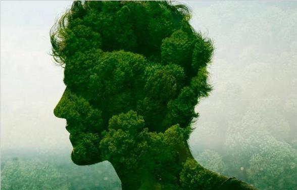 一个环保主义者的倒戈