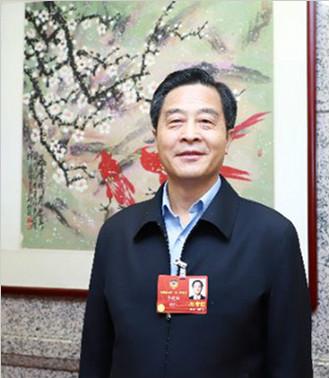"""全国政协委员李建红:中企应成为世界经济格局的 """"塑造者"""""""