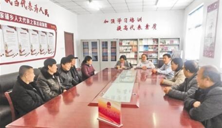 河北省大力开展县乡人大工作和建设