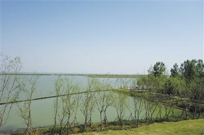合肥积极整改恢复巢湖湿地