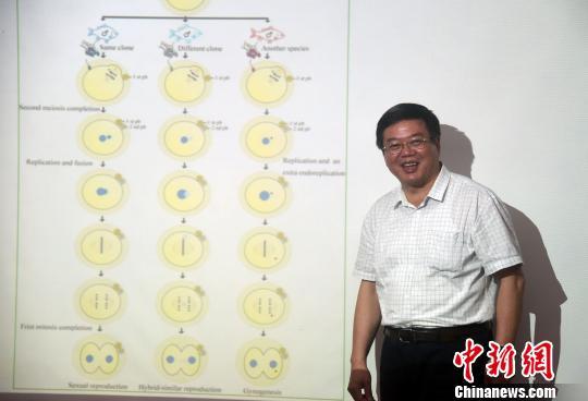 """6月上旬,桂建芳院士向媒体介绍异育银鲫""""中科5号""""新品种培育过程。 孙自法 摄"""