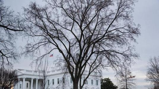 白宫发言人将离开白宫?桑德斯:这个故事我不了解