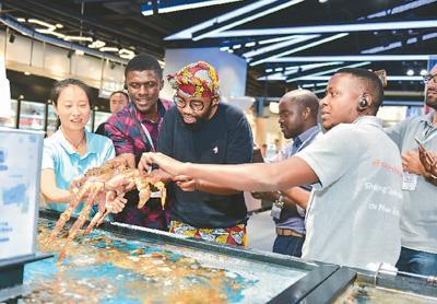 """非洲创业者中国""""取经"""":中国经验更接近非洲现实"""
