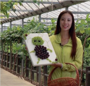 杨梅香,葡萄甜,上虞江畔景美果鲜