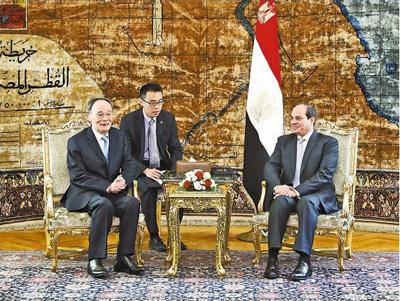 王岐山访问埃及