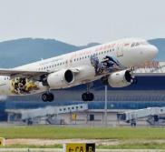 国际航班一名乘客突然昏迷 中国医生万米高空紧急救治
