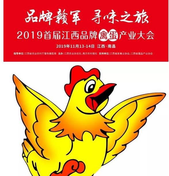 """探寻江西九江乡音""""稻鸭共育""""新模式:鸭肉风味好,稻田每亩增收100元"""