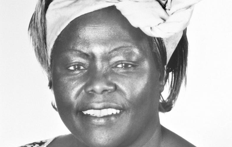 肯尼亚环保人士万加丽·马阿萨伊