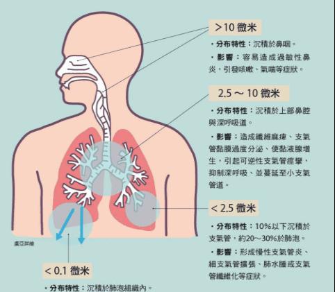 邱汉辉——梅州市呼吸病学会委员 呼吸内科副主任医师