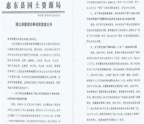 惠东县霞坑村耕地被违法舆情追踪